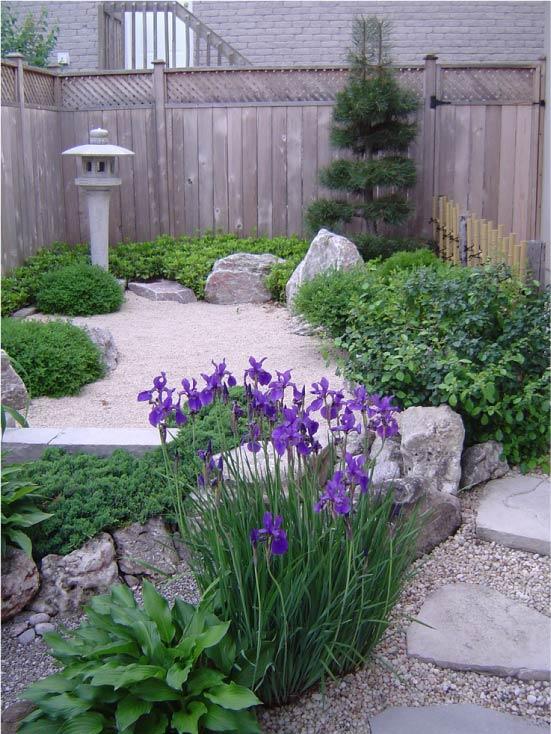 Рокарий на заднем дворе